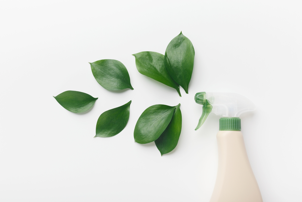Greening your Cleaning with Écologique